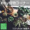 Instagram投稿企画第三弾!『#my植物コーナー』