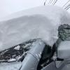風景:新潟散歩【近所の雪景色】