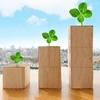 【Chapter72】外国ETFの定期買付実施報告!SBI証券のメリットと選んだファンドの紹介
