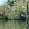 愛知の大正池までお散歩登山