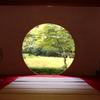【明月院】鎌倉の夏は暑い!?心だけでも涼みにお寺巡り!