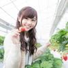 冬に食べてほしいオススメいちごグミ【グミまとめ】
