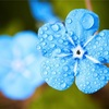 【雨の日】私にとって他人の「小さな優しさ」を思い出す日