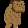 種分化と進化の実体3