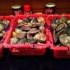 甲殻類と貝類は鉄板です!