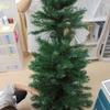 そろそろクリスマス☆