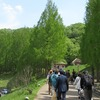 2017.04.29 あけぼの子どもの森公園