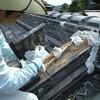 瓦屋根の補修作業