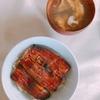 【父の日】鰻が届きました‼冷蔵便で届いた鰻(浜名湖山吹)に家族で舌鼓