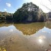 水鳥の池(大阪府吹田)