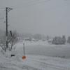久し振りの寒さ⛄ 真冬日は確実