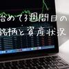 株を始めて3週間目の保有銘柄と資産状況