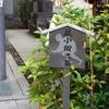 諸宗山回向院への散策 (4)