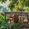 シンガポール植物園内レストラン Halia(ハリア)でのブランチ 〜 2017年11月シンガポール旅行6