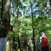 夏至のフスベヨリ谷 渓流歩き