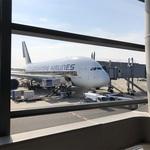 【旅行記】シンガポール航空のエアバスA380とボーイングB787-10 大阪からシンガポールまで乗り比べ