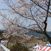 '18全日本広島ラウンド本番。