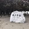 【台湾旅行】台南散歩  安平まで海を見に行く