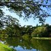 桜の名所としても有名な【馬見塚公園】