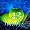 【13TH FLOOR ELEVAPORS・リキッド】BERMUDA をもらいました
