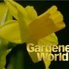 Gardeners World 2019 (第2回)