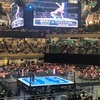 G1 CLIMAX29