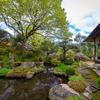 京都・大原 - 石楠花咲く実光院