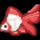 金魚のヒレ裂け