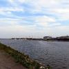 ハゼ釣り 四日市市楠漁港でハゼ爆釣!サイズは小さいがコツっというアタリが心地良い