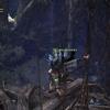 祝福のおすそわけ10 オタカラ攻略 古代樹の森編 モンスターハンターワールド:アイスボーン