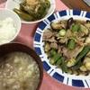 豚肉と夏野菜のおろしポン酢炒め、ピーマンのくたくた煮ほか。野菜の季節が変わっていく。