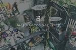 ベトナム・ニャチャンのWifiカフェ「Jungle Coffee Nha Trang」が可愛すぎて泣きたい