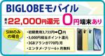 【10月 】BIGLOBEモバイル 新プラン提供開始~1年間は毎月割引
