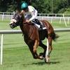 競馬でいう返し馬とは? ~実践的返し馬の見方を公開~