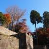 石垣の城「紅葉」