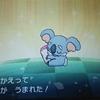 アローラ図鑑222.★ネッコアラ