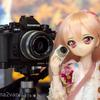 ドール写真まとめ 夜桜~カメラ機材~湿原
