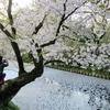 花筏(はないかだ)の弘前公園です