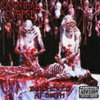 Cannibal Corpse 「Butchered At Birth」