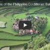 天へと続く世界最大級の棚田 フィリピン ルソン島