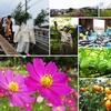 島根大学写真部有志と今月も多伎町にて