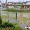 「佐久の季節便り」、大雨で、「裏のグランド」は水溜り…。
