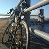 久しぶりに多摩川を走ってみた(鶴見橋~宿河原堰往復44km)