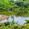 かえで池(愛知県長久手)