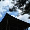◆6/11    白鷹山&富神山③…白鷹山:下り