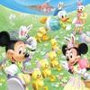 5月12日から2年ぶりのうさピヨ復活決定!