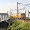 土讃線琴平駅でJR西日本115系普通電車を撮ってみた