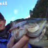 【ジャッカル】冬でも表層で釣れる!「スパイテール」を津風呂湖で実釣解説!