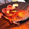 【国東移住生活|外食編】国東半島の浜焼き、竹田津の「おかげハウス」で浜焼きのお食事しました。