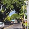ハワイ旅行2015 四日目:キラウエア火山ツアー